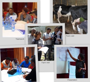 Training Dairy Economics
